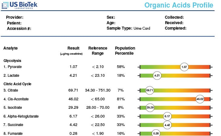 Organic Acids Profile Sample Report
